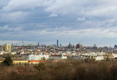 Panorama of Vienna, Austria — Stock fotografie