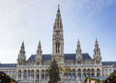 Town hall of the Vienna, Austria — Stock Photo