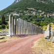 Ancient Messene, Greece — Stock Photo #40218389