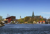 Nordic Museum and Vasa ship Museum, Stockholm — Photo