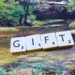 Word gift - Stock Photo