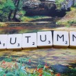 Stock Photo: Word autumn