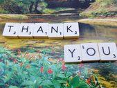 Word thank you — Stock Photo