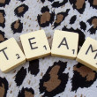 Word team — Stock Photo