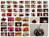 Collage — Foto Stock