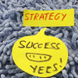 Word strategy ,success — Stock Photo