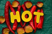 Word hot — Stock Photo