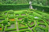 Green garden — Stock fotografie
