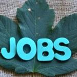 Jobs — Stock Photo