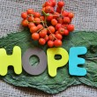 Hope — Stock Photo #31627203