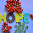 Hope — Stock Photo #31710185