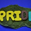 Pride — Stock Photo #31766707