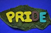 Pride — Stock Photo