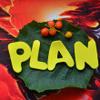Plan — Stock Photo