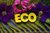 Word eco — Stock Photo