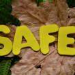 Safe — Stock Photo #34160625