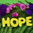 Hope — Stock Photo #34161523