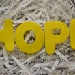 HOPE — Stock fotografie #34323229