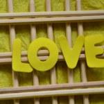 LOVE — Stock Photo #35314329