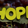 HOPE — Stock fotografie #37129633