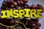 INSPIRE — Stockfoto