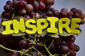 Inspirar — Foto de Stock