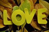 Любят — Стоковое фото