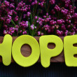 Hope — Stock fotografie #37413877