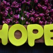 Hope — Stock Photo #37413877