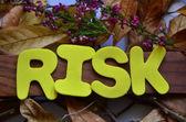 Riziko — Stock fotografie