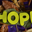Hope — Stock fotografie #37793035