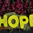 Hope — Stock fotografie #37793055