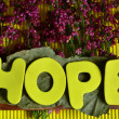 Hope — Stock fotografie #37815195