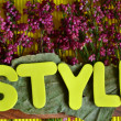 Style — Stock Photo #37815399