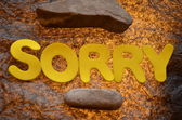 Sorry — Stock Photo