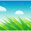 Blades of grass and sky — Stock Vector