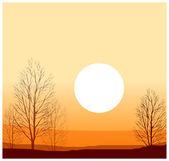 Winter sunset — Stock Vector