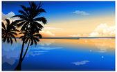 Palm at dawn — Stock Vector
