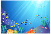 Underwater sealife — Stock Vector