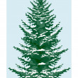 Fir tree  — Vettoriali Stock