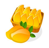 Vector icon mango — Stock Vector