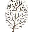 Vector icon tree — Stock Vector #13445756