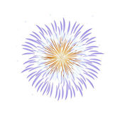 Vector icon fire works — Stock Vector