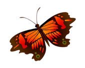Icon butterfly — Stock Vector
