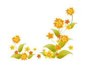 Orange flowers — Stock Vector