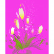 Yellow tulips on a pink background  — Stock Vector
