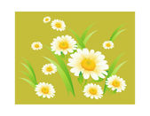 White daisies on a dark green background — Stock Vector