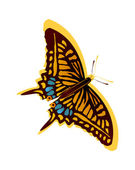 Beautiful butterfly — Vector de stock