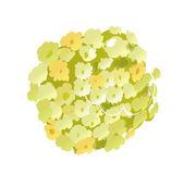 Green bouquet of flowers — Stock Vector