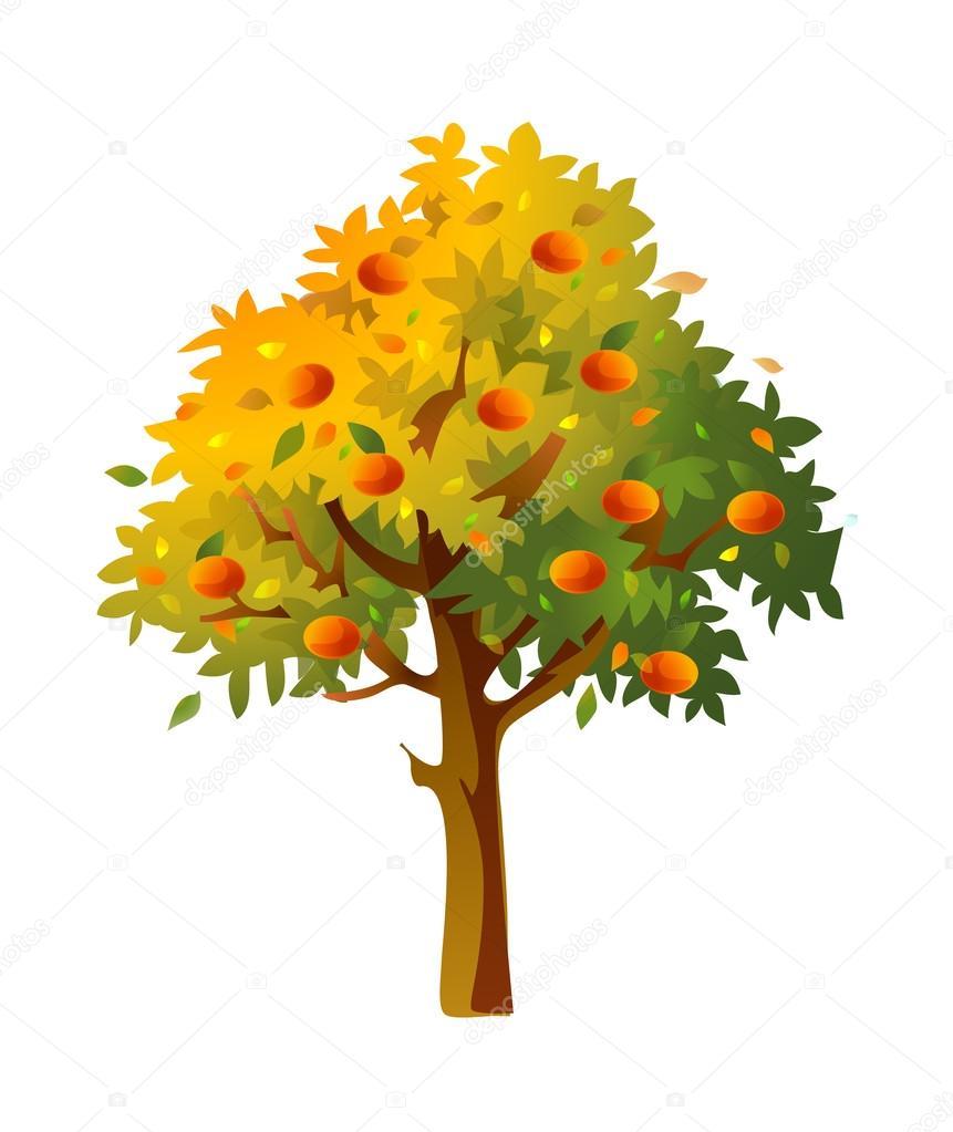 矢量,在白色背景上的水果树 — 矢量图片作者 zzve
